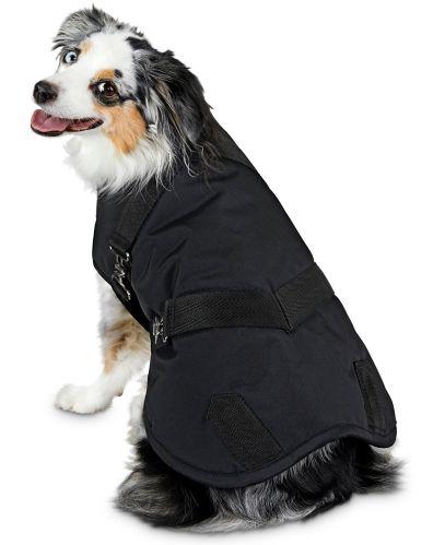 Manteau pour chien de style couverture à cheval Petco Good2Go