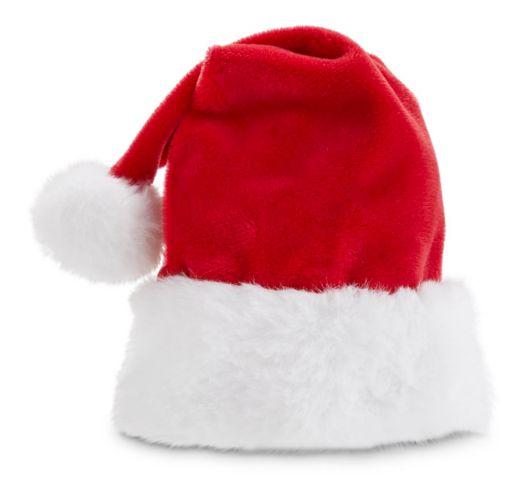 Petco Pawfect Christmas Dog Santa Hat