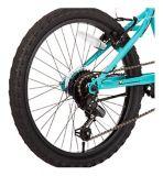 Nakamura Meyou Youth Bike, Blue, 20-in | NAKAMURAnull