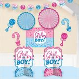 Girl or Boy Gender Reveal Room Decorating Kit, 10-pc