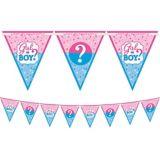 Girl or Boy Gender Reveal Pennant Banner