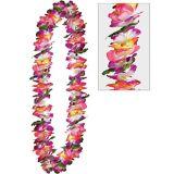 Collier de fleurs de Maui | Amscannull
