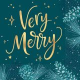Teal Very Merry Lunch Napkins, 16-pk