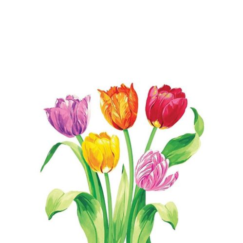 Spring Tulips Dinner Napkins, 16-pk