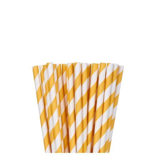 Pailles en papier à rayures, paq. 24 Image de l'article