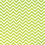 Kiwi Zigzag Printed Tissue Paper, 8-pk