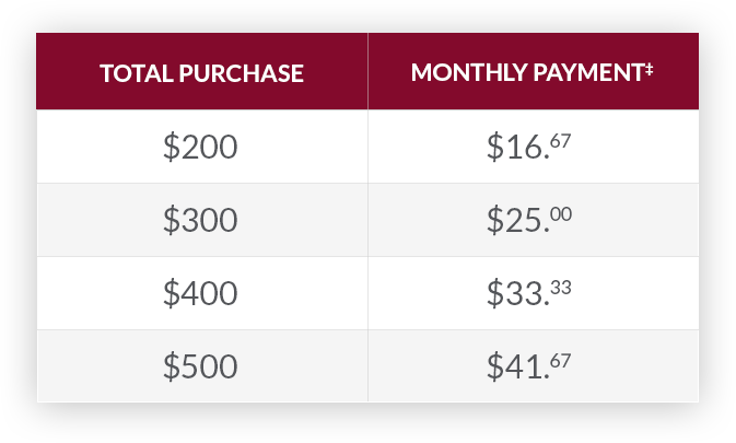 chart with example of payment plan in monthly instalments