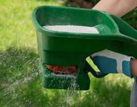 Lawn Care | Canadian Tire