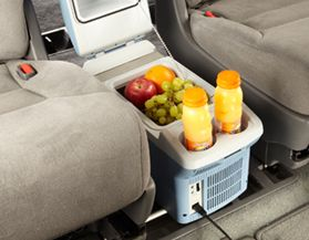 Travel Coolers & Warmers