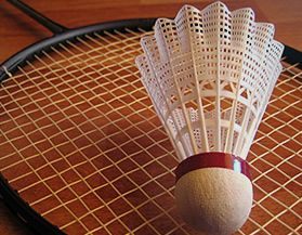 Shop all badminton products