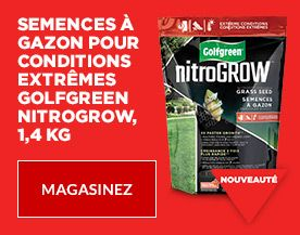 Golfgreen nitroGrow Extreme Condition Grass Seed
