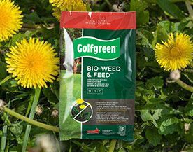 Golfgreen Weed Control