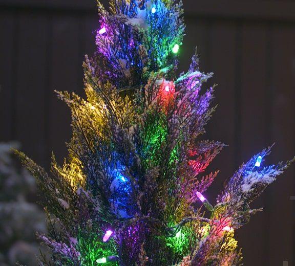 Mini-lumières à DEL, NOMA Advanced EverTough, multicolore, paq. 70 Nos lumières les plus durables dotées de la technologie Twin Power créent des ampoules DEL très brillantes.  MAGASINEZ MAINTENANT