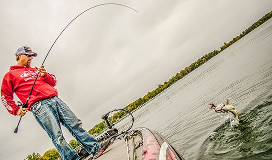 Longer fishing rods do longer casts and can handle bigger fish.