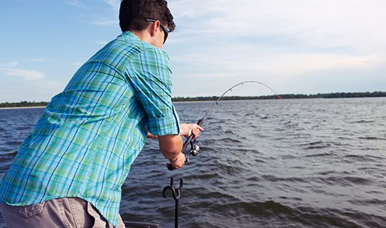 Medium action fishing rods are good for live fish baiting.