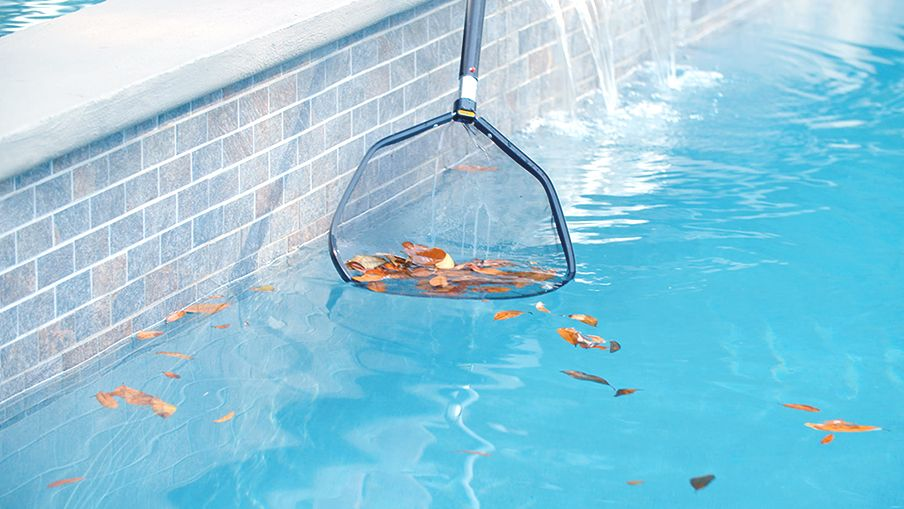 How to clean a pool | Canadian Tire
