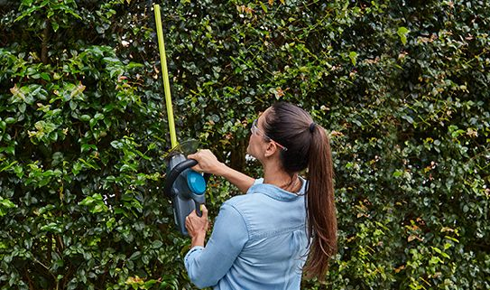 How to choose a hedge trimmer | Canadian Tire