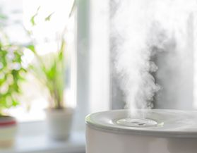 Humidifiers & Accessories