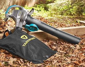 Leaf Blowers & Accessories