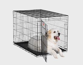 Dog Crates, Gates & Kennels