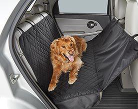 Articles de sécurité d'auto pour animaux